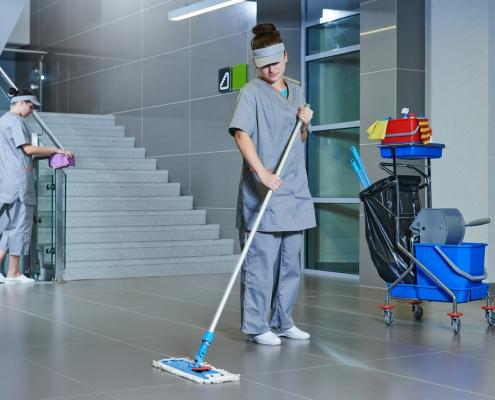Limpeza, asseio e conservação